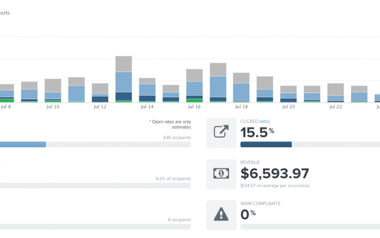 The data-driven results of an email campaign for people who opted in through a lead magnet.