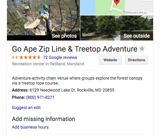 Knowledge Panels SERP feature example