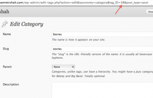 Get Category ID in WordPress
